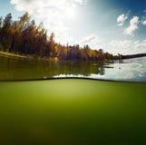 Pond with sky Royalty Free Stock Photos