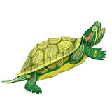 Pond slider turtle green smiling. vector illustration Royalty Free Stock Photo