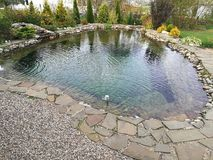 Pond. Small pond in rural areas Royalty Free Stock Photography