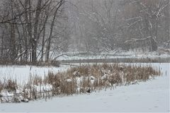 Pond in Snow Storm Royalty Free Stock Photography