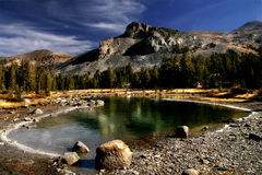 Dana Meadows at Yosemite. A pond starting to freeze over in Dana Meadows, high in the Sierra Nevada in Yosemite National Park royalty free stock photos