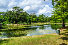 Pond - Stock Image. Fishing pond at Hermann Park, Houston Stock Image