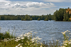 Pond Stolec. In summer. South Bohemia, Czech Republic stock photography