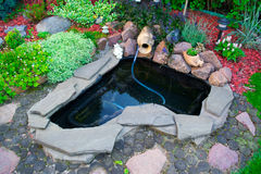 Pond with stones and herbs.  Royalty Free Stock Photo