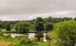 Pond on a Stormy Day stock image