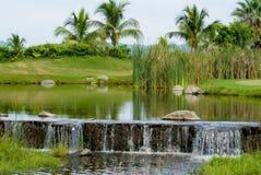 Pond and Stream Stock Photos