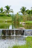 Pond and Stream Royalty Free Stock Images