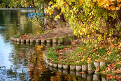 Pond in style a jaw. Finishing of the coast of a pond in style a jaw Royalty Free Stock Photography