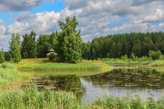Pond  in the summer afternoon Stock Photography