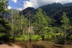 Pond in Summer Mountain Range Royalty Free Stock Photography