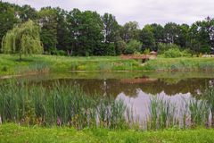 Pond in the summer park. Summer day at the picturesque lake in the park with a bridge and a gazebo royalty free stock photography