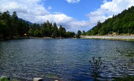 Pond in summer. Photo taken on: July 27 Saturday, 2013 Royalty Free Stock Photography