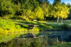 Pond in summer royalty free stock photography