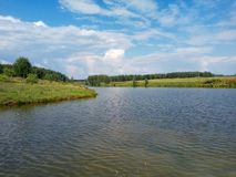 Pond on a sunny summer day. royalty free stock photography