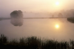 Pond at Sunrise Royalty Free Stock Images