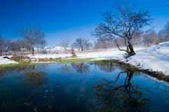 Pond surrounded by snow. A pond surrounded by snow with trees mirrored on the water royalty free stock photos