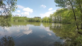 The pond surrounded by trees. The pond surrounded by trees and moving camera from left to right. Blue sky with clouds stock footage