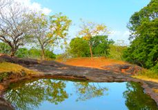 Pond on the top of Yapahuwa Rock, Sri Lanka Royalty Free Stock Images