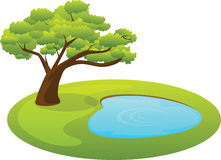 Pond and tree or ecosystem Stock Photo