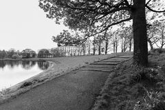 Pond, tree and footpath, Inverleith Park, Edinburgh, Scotland in. Atmospheric scene of pond, tree and footpath in black and white at Inverleith Park in Edinburgh royalty free stock images