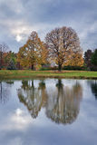 Pond And Trees Royalty Free Stock Image