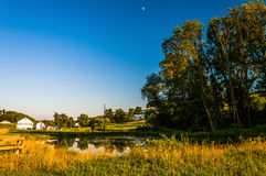 Pond and trees on a farm in rural York County, Pennsylvania. Royalty Free Stock Photo