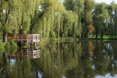 Pond and trees at the Orunia Park Royalty Free Stock Image