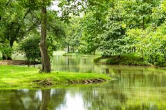 The pond and trees in the park. The pond and trees in the park , Thailand stock photo
