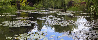 Pond, trees, and waterlilies in a french garden Stock Image