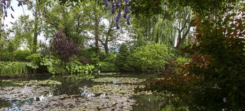Pond, trees, and waterlilies in a french garden Stock Images