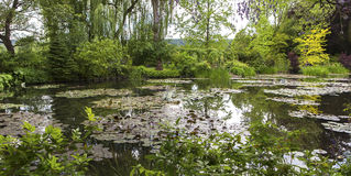 Pond, trees, and waterlilies in a french garden Royalty Free Stock Photos