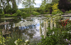Pond, trees, and waterlilies in a french garden Royalty Free Stock Photography