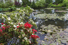 Pond, trees, and waterlilies in a french garden Stock Photography