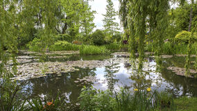 Pond, trees, and waterlilies in a french garden Royalty Free Stock Photo