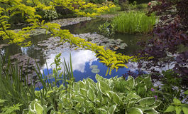 Pond, trees, and waterlilies in a french garden Stock Photo
