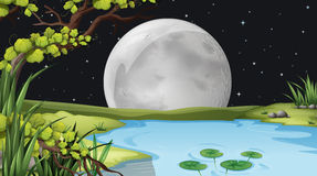 A pond under the fullmoon vector illustration
