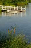 Pond View of Dock and Cattails Royalty Free Stock Image