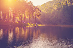 Pond water and sunrise. With vintage effect Royalty Free Stock Image