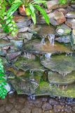 Pond waterfall in a greenhouse. royalty free stock photography
