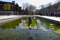 Pond. In the Watford town centre on a sunny day Stock Image