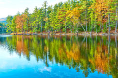 Pond in White Mountain National Forest, New Hampshire Royalty Free Stock Photography