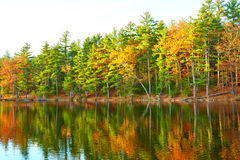 Pond in White Mountain National Forest, New Hampshire Stock Photos