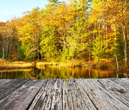 Pond in White Mountain National Forest, New Hampshire Royalty Free Stock Images
