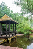 Pond willow and Grass pavilion Stock Photography