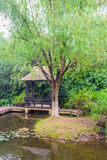 Pond willow and Grass pavilion Royalty Free Stock Image