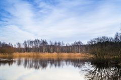 Pond in a winter, snowless installment Royalty Free Stock Photography