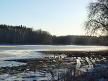 Pond in Winter, South Bohemia Stock Photography