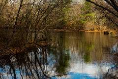 Pond in the Woods. Shot of a lake in the woods of a nature preserve in Autumn Stock Photo
