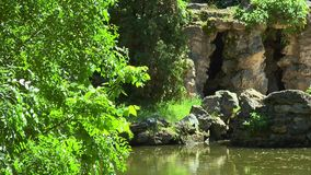 The pond in the woods. On the waterfront stone ancient caves overgrown with vines and moss stock footage