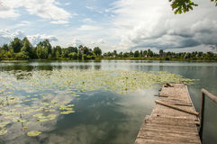 Pond with yellow pods Stock Images